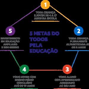 infográfico das 5 metas do todos pela educação